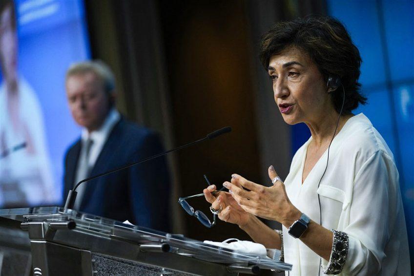 r ligt een nieuw compromisvoorstel dat Portugees voorzitter Maria do Céu Antunes namens de landbouwministers op tafel heeft gelegd. Foto: ANP