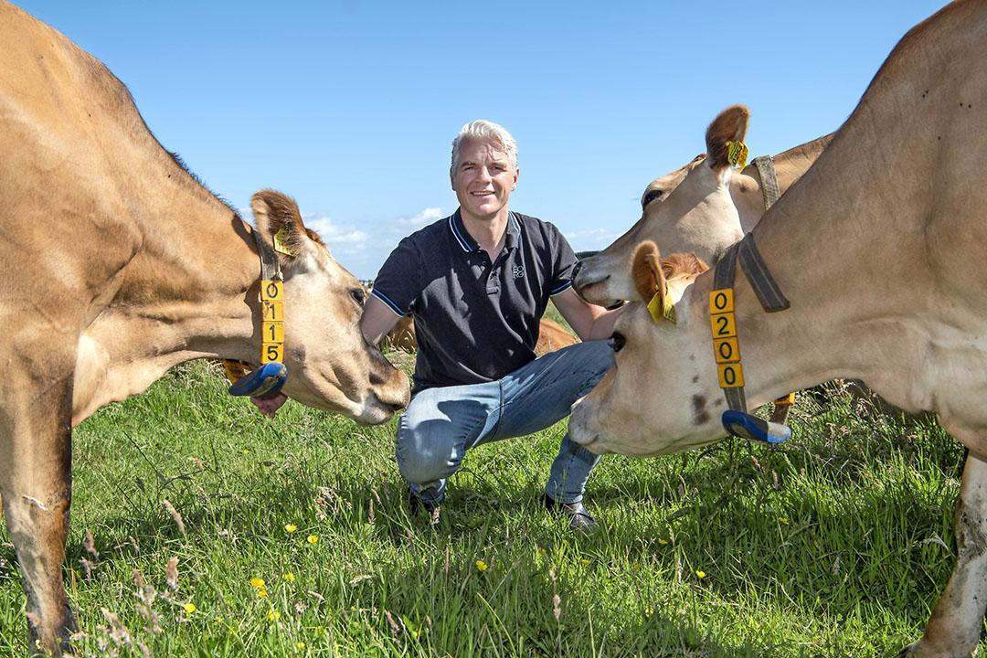 Wiebe Willig melkt sinds enkele jaren Jerseys. Hij heeft er nu 116 aan de melk.