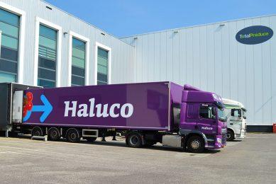 Handelsbedrijf Haluco uit Bleiswijk is onderdeel van Total Produce. - Foto: Haluco.