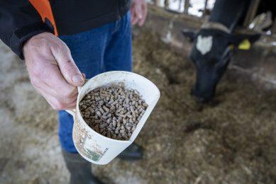 De prijs van A-brok nadert de €28 per 100 kilo. - Foto: Anne van der Woude