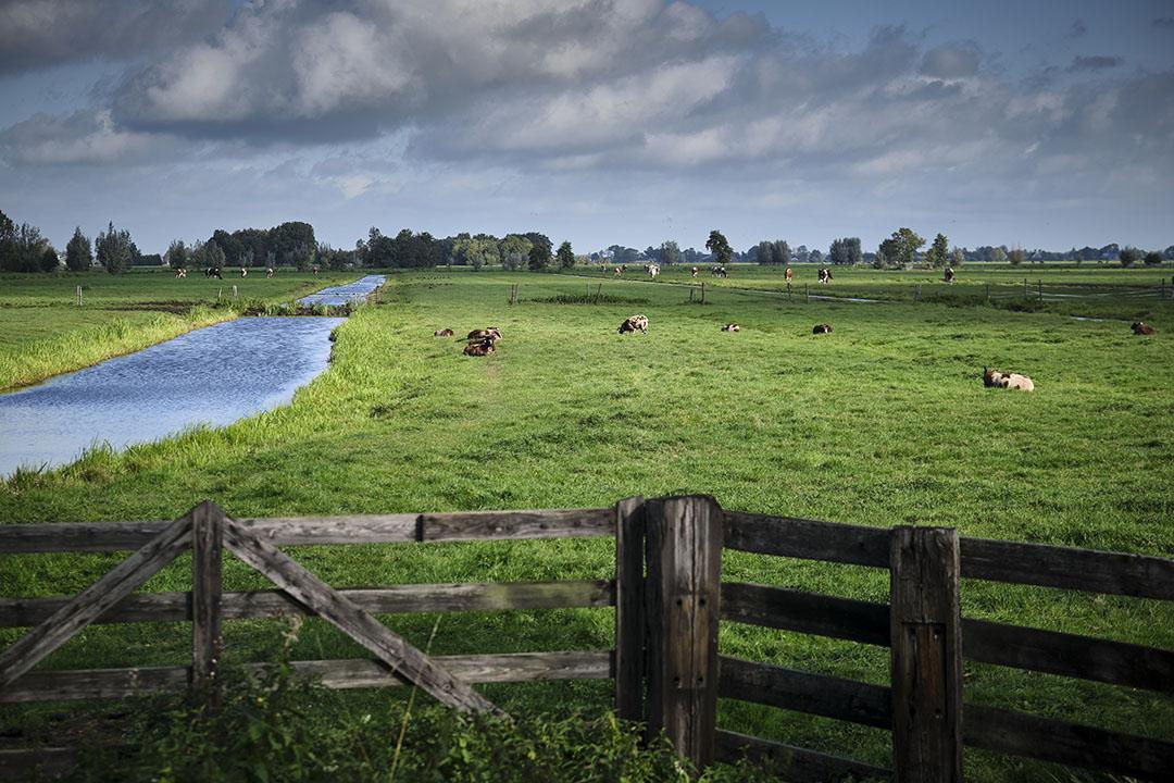 Foto: Roel Dijkstra