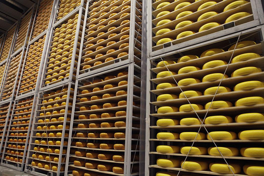 Opslag van kaas bij A-ware. - Foto: Michel Zoeter