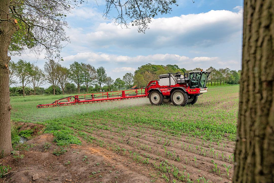 Onkruidbestrijding. Een uitspraak van de rechtbank Noord-Nederland maakt het gebruik van bestrijdingsmiddelen nabij Natura 2000-gebieden moeilijker. Deze foto is niet het Drentse Westerveld. - Foto: Michel Velderman