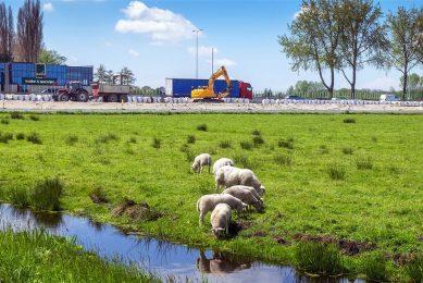 Aanleg van een nieuwe snelweg tussen de A13 en de A16/A20. De vergunningstoets voor wegen zal strenger worden. - Foto: ANP