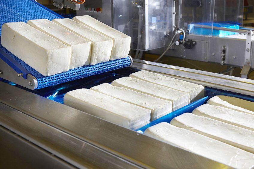 Productie van mozzarella. - Foto: Milcobel