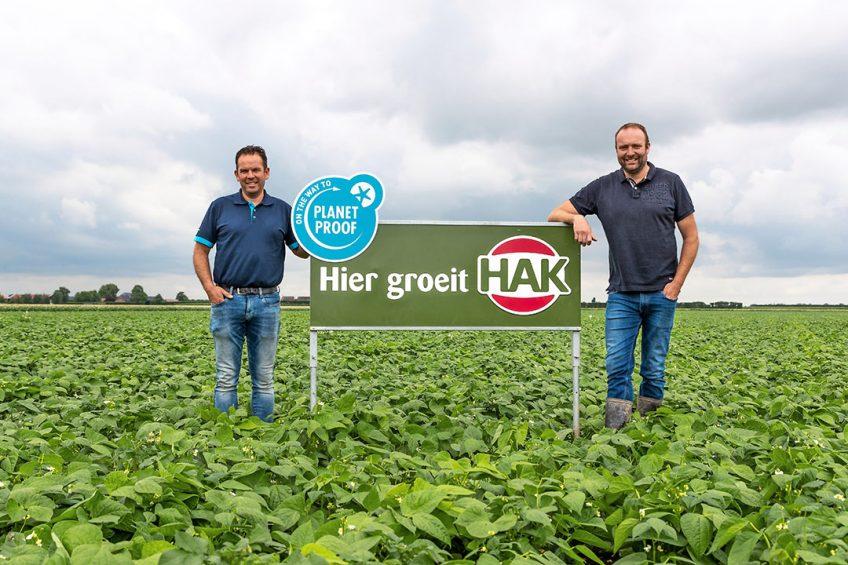 Telers Pieter Pateer en Anne Douwe van der Zee in de bruine bonen. Foto: HAK