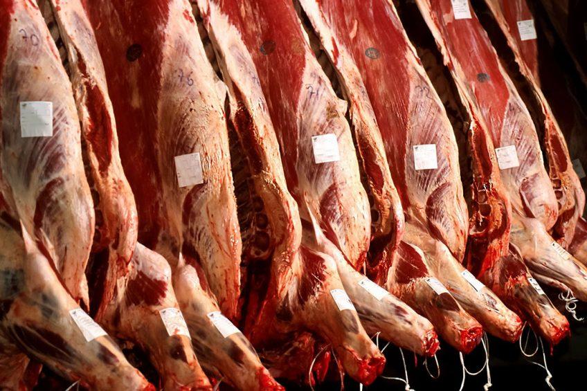 Beeld uit een slachthuis (niet bij Gosschalk). - Foto: Canva.com
