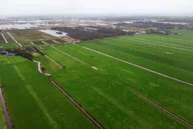 Op de foto: Natura 2000-gebied Nieuwkoopse Plassen en de Haeck. - Foto: Herbert Wiggerman