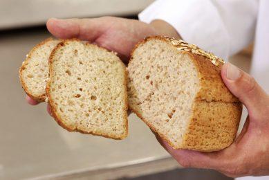 Koopmans gaat voor meel uit Nederlandse tarwe