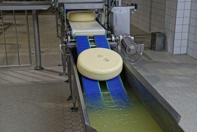 Productie van kaas in fabriek FrieslandCampina. - Foto: Lex Salverda