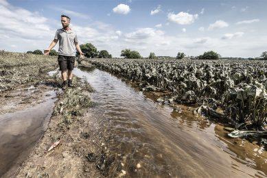 Een akkerbouwer maakt de schade op die de overstroming van de Maas heeft veroorzaakt. - Foto: ANP