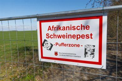 Foto: ANP/Volker Hohlfeld via www.imago-images.de