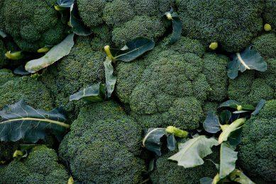 Chloorpyrifos wordt gebruikt op gewassen zoals sojabonen, fruit- en notenbomen, broccoli en bloemkool. Foto: Canva