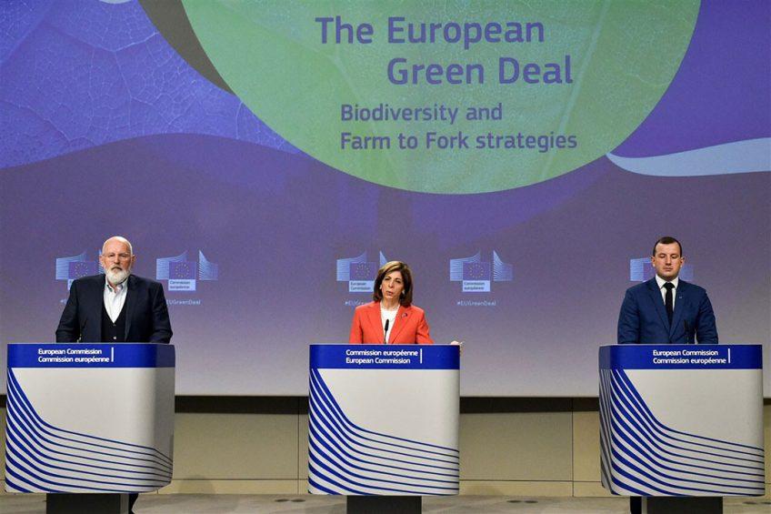 Op 20 mei 2020 presenteerden Frans Timmermans, Stella Kyriakides en Virginijus Sinkevicius de Green Deal. Ruim een jaar later is nog steeds veel onduidelijk over de effecten ervan. - Foto: EPA/JOHN THYS / POOL