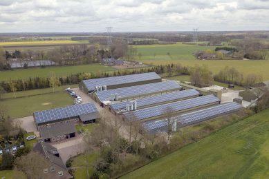 Zonne-energie-installatie bij pluimveebedrijf in Noord-Brabant. - Foto: Bert Jansen
