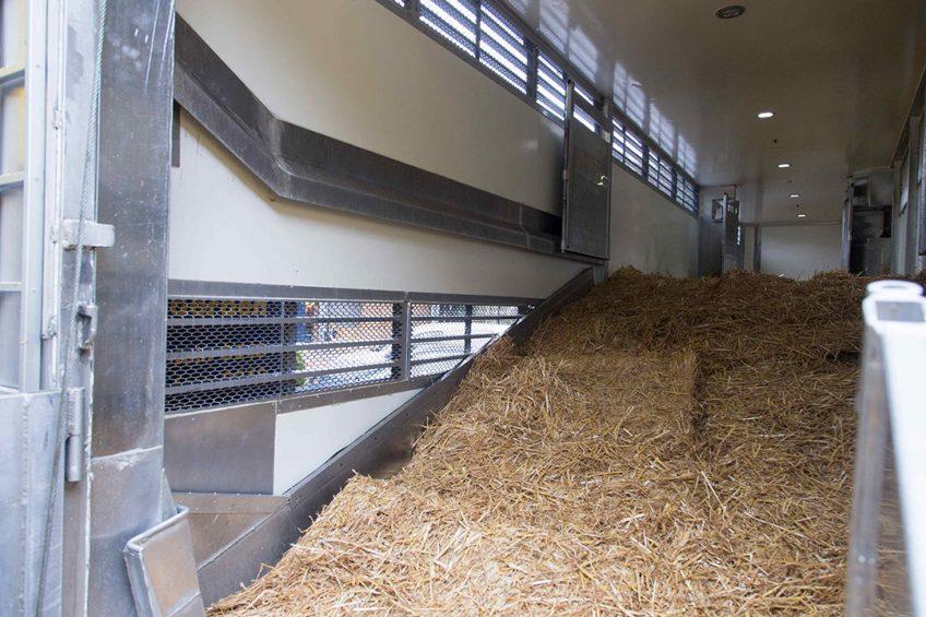 Het plattelandsministerie Defra heeft ook andere restricties voor veetransport aangekondigd. - Foto: Koos Groenewold