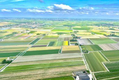 Landbouwgrond in de provincie Noord-Holland, met op de achtergrond windmolens. - Foto: Martijn ter Horst