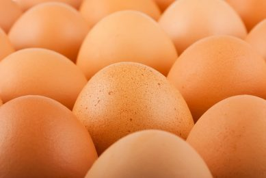 Het aanbod van bruine eieren is beperkt. - Foto: Canva