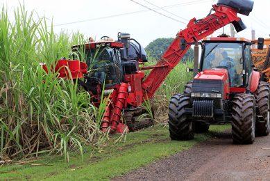 De suikerproductie in Brazilië was in het tweede kwartaal van 2021 11% lager dan in dezelfde periode een jaar eerder. - Foto: Henk Riswick