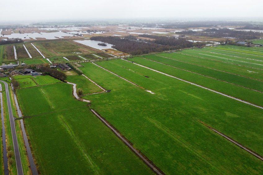 De aankoop van veehouderijlocaties bij stikstofgevoelige natuurgebieden loopt via de provincies. - Foto: Herbert Wiggerman