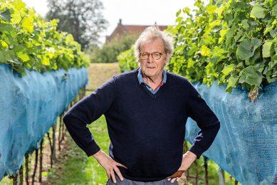 Nederlandse wijnproducenten