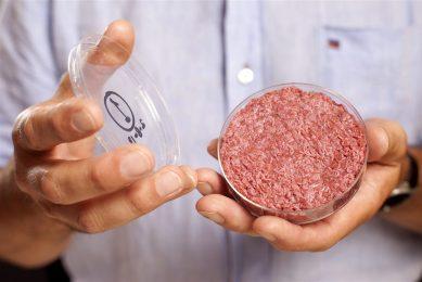 Hamburger van kweekvlees. - Foto: ANP
