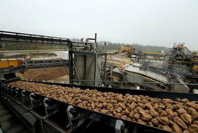 Suikerbieten worden verwerkt bij Cristal Union in Bazancourt, nabij Reims. - Foto: ANP