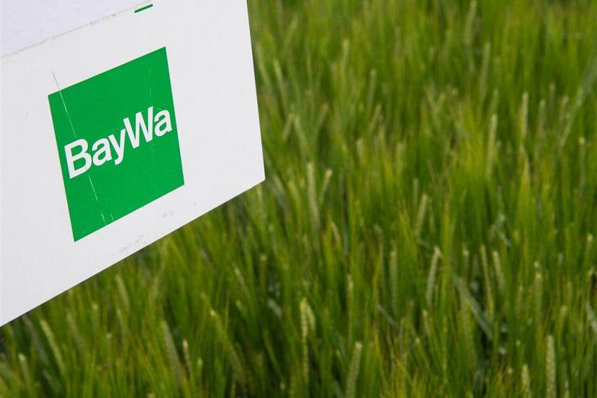 Met deze stap wil de Baywa Group met activiteiten in veel sectoren profiteren van de groei in groente en fruit. Foto: ANP