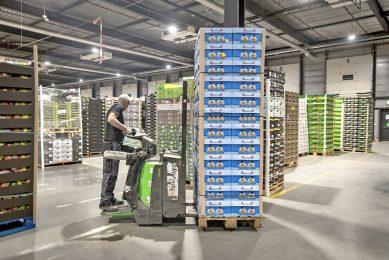 Basisvoeding, waaronder groenten en fruit, leverde de EU vorig jaar voor het eerst een handelsoverschot op (€6 miljard). - Foto: Dennis Wisse