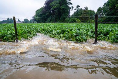 Wateroverlast door extreme hoosbuien in Zuid-Limburg, juli 2021. - Foto: Bert Jansen