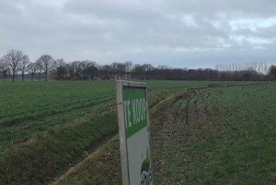 Door de hoge prijzen voor bouwland steeg het gemiddelde prijsniveau naar €78.534 per hectare. - Foto: Martijn ter Horst