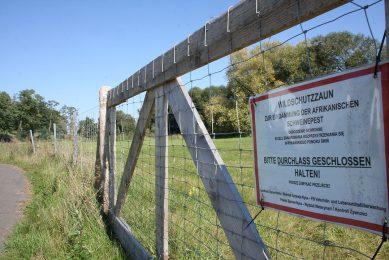 Hekwerken zijn belangrijk om verplaatsing van wilde zwijnen te beperken. - Foto: Misset