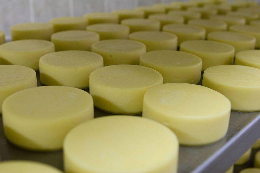 Amerika biedt kaas goedkoper aan in vergelijk met EU en Nieuw-Zeeland. Foto: Canva